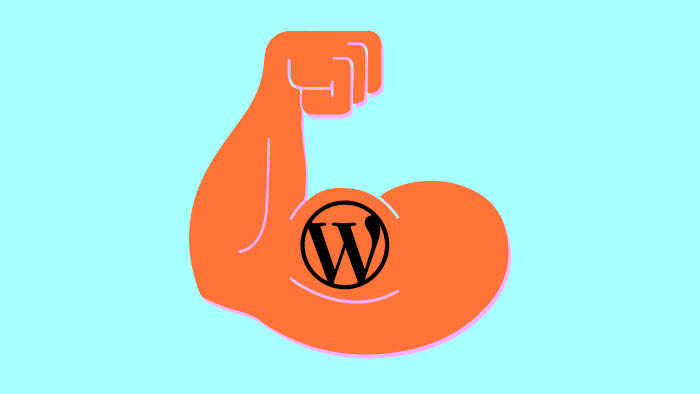 The Strengths and Weaknesses of WordPress