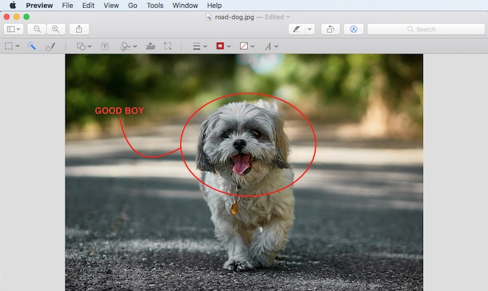 Mac Preview Write Draw on Image
